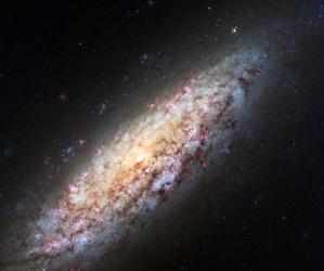 materia oscura, neutrinos, ANTARES, KM3NeT, IFIC,